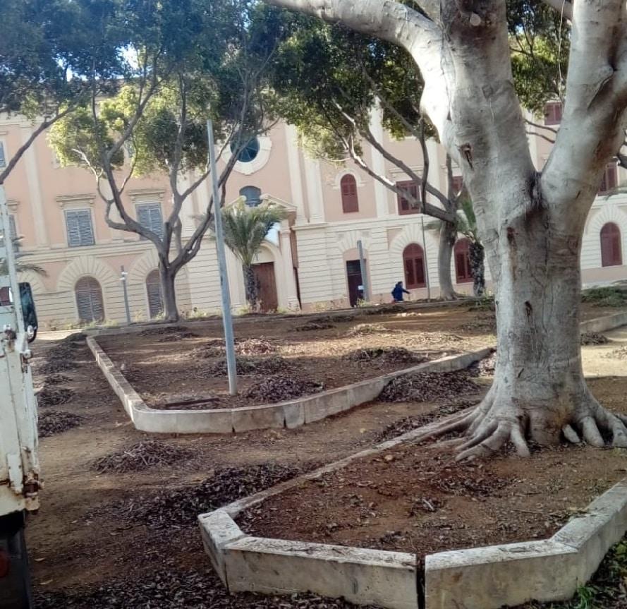 Palermo, la cura e riqualificazione del verde pubblico tra gli interventi del Comune