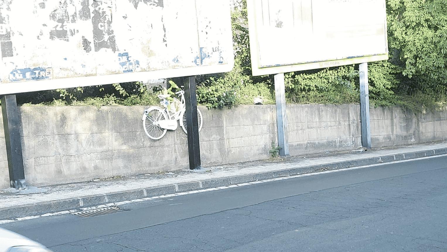 Catania, tra rimozioni e affissioni cartelloni abusivi in via Passo Gravina: il bue dice all'asino che ha le corna