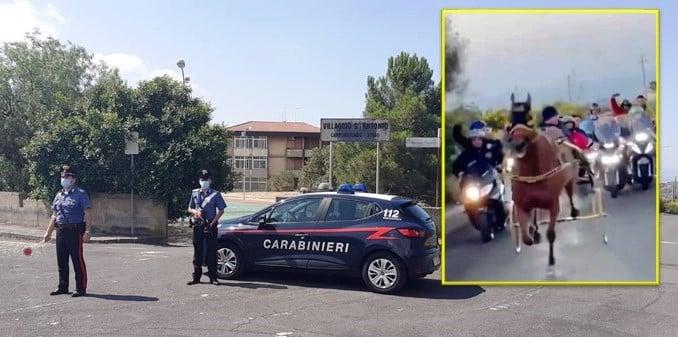 Catania vs Siracusa, corse clandestine di cavalli: animali ridotti allo stremo delle forze, 6 denunce