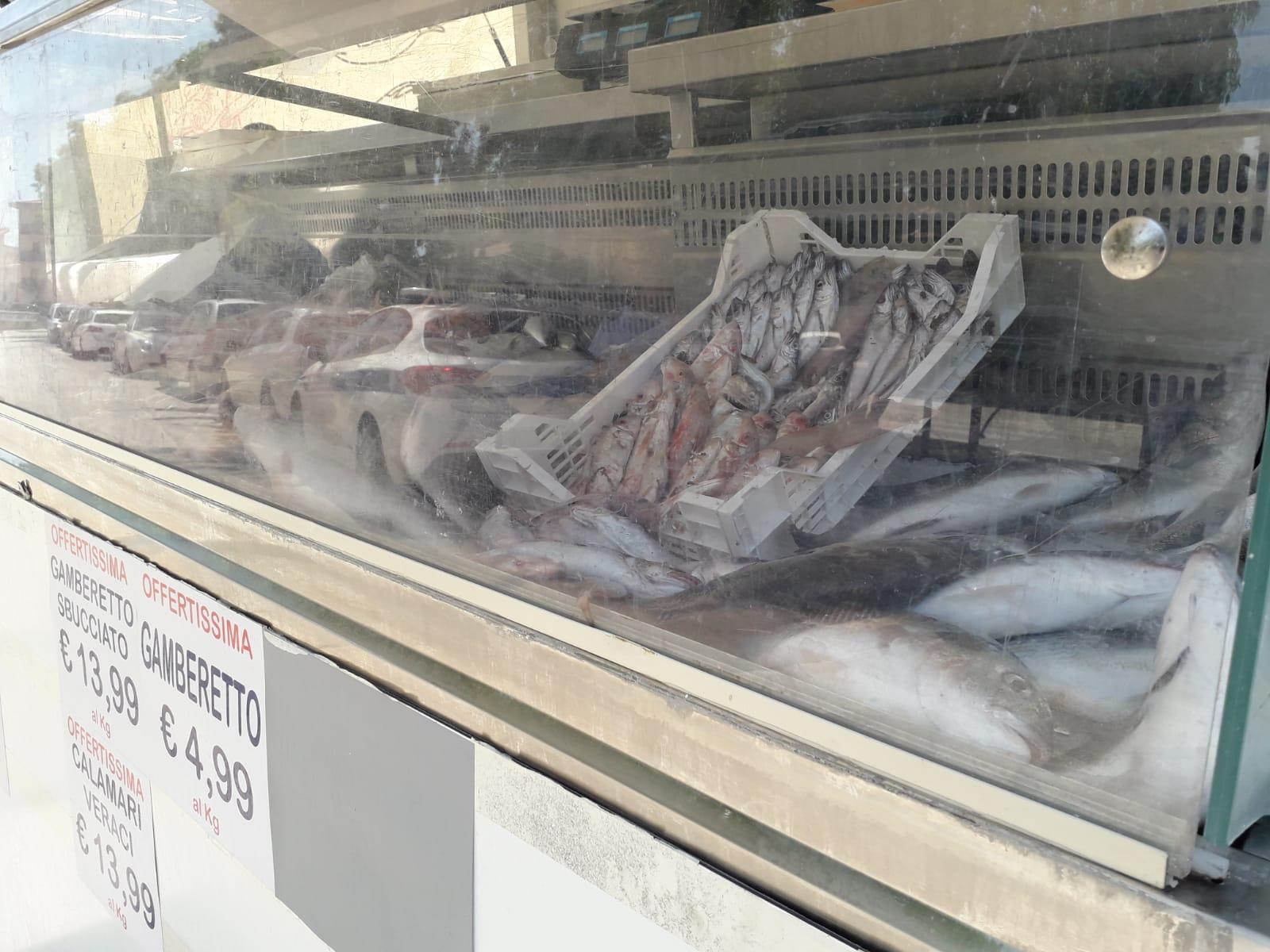 Gamberi, orate, merluzzi e altro pesce non tracciabile: sequestrati oltre 30 chili