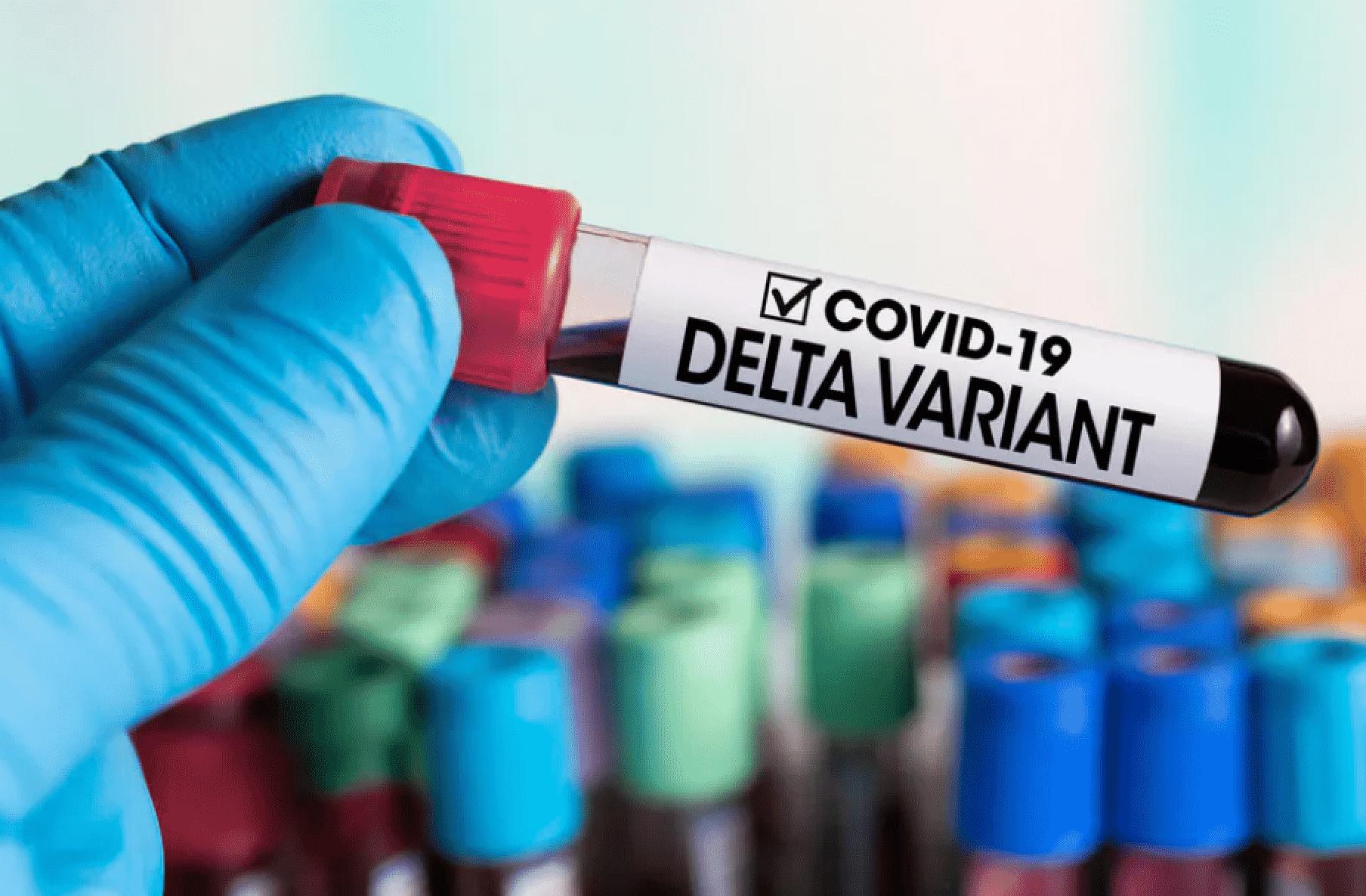 Covid-19, in Italia la variante Delta oltre il 90%, sostituita la Alfa – IL REPORT