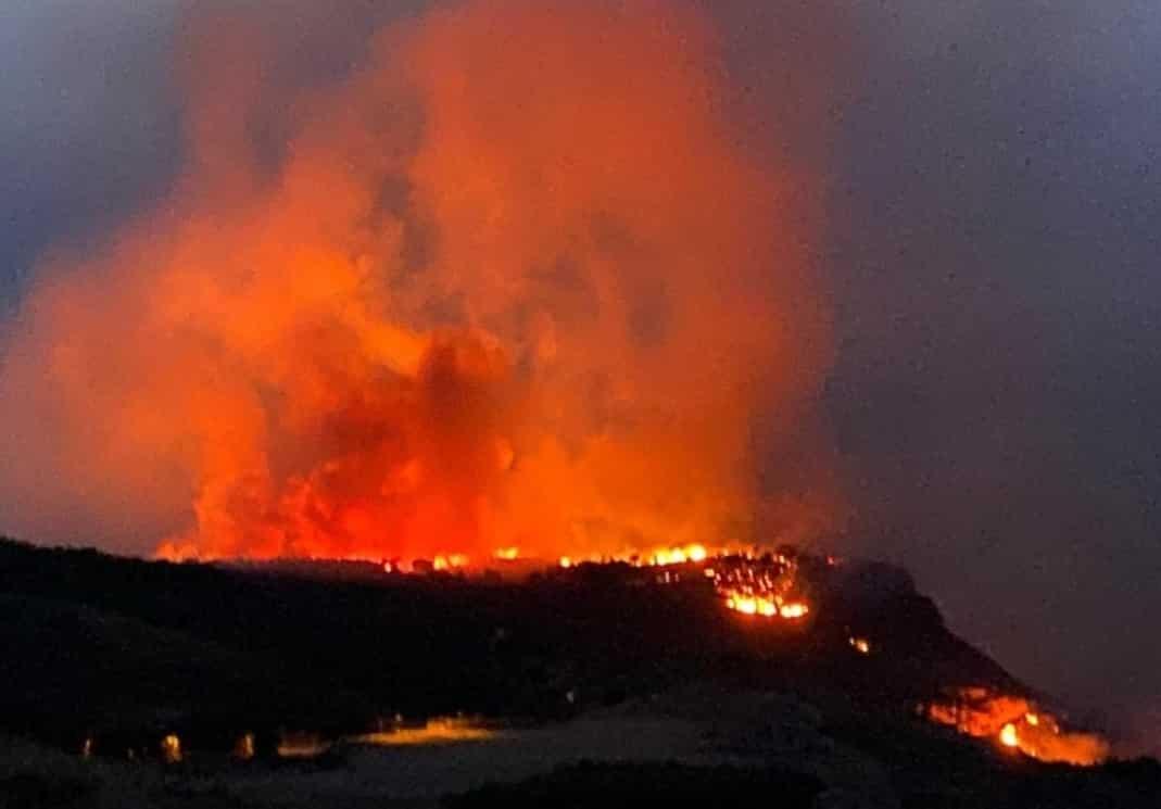 """Brucia per tutta la notte la montagna di Erice, il fuoco minaccia le case: """"I piromani vanno puniti"""" – VIDEO"""