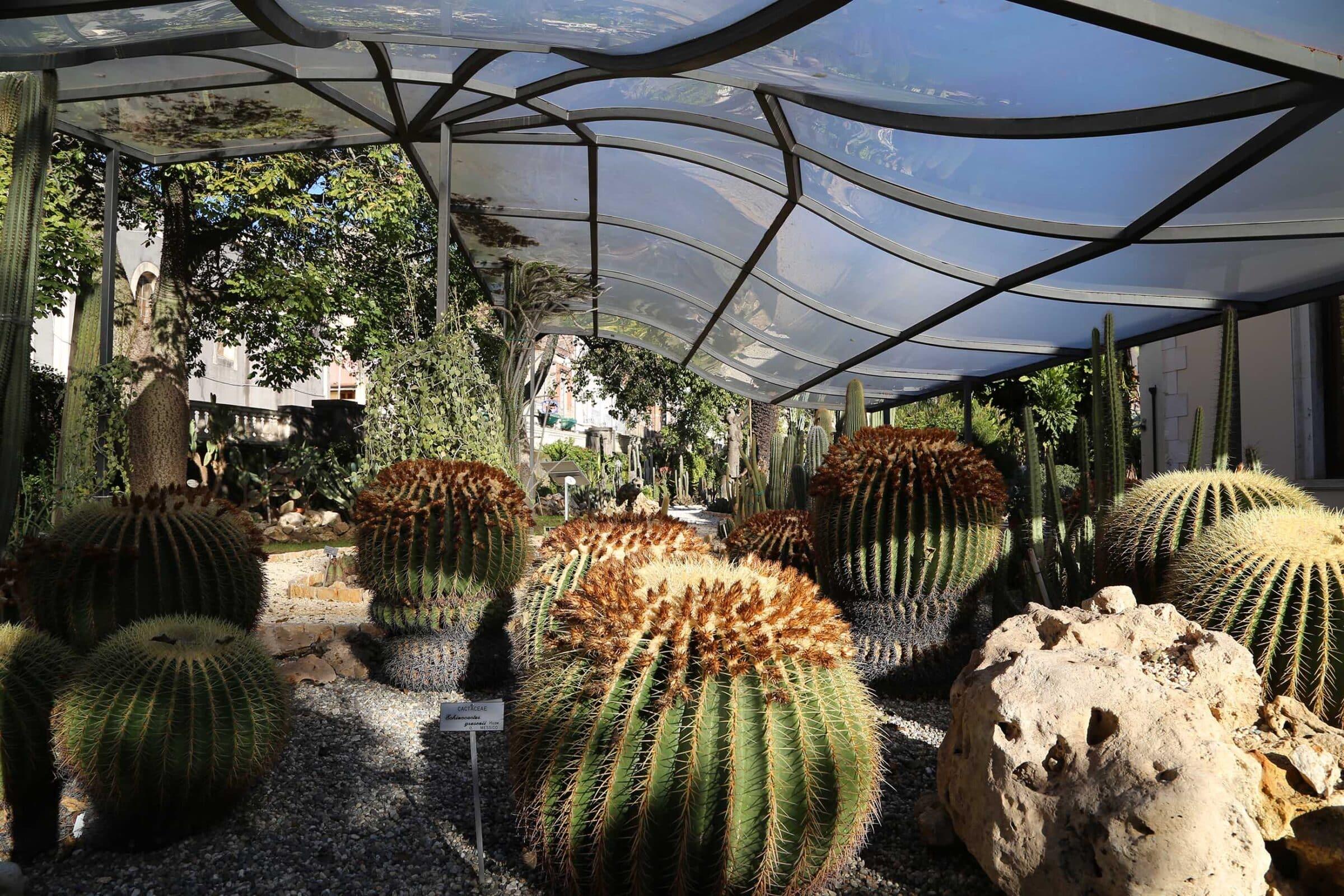 UNICT – L'Orto Botanico di Catania riapre le porte ai visitatori
