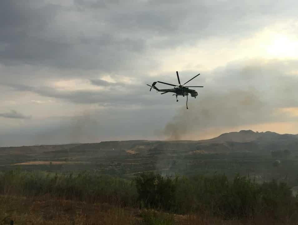 Fiamme nel Catanese, brucia l'Oasi del Simeto: vigili del fuoco e Forestale sul posto