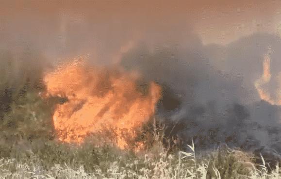 Catania, ennesimo incendio: fiamme sul Ponte Primosole – VIDEO