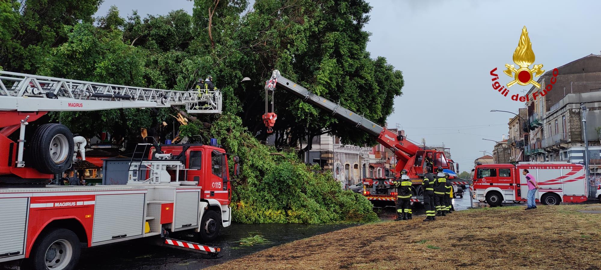 Tromba d'aria anche a Catania: tetti scoperchiati, auto in panne e alberi a terra: centinaia di interventi dei vigili del fuoco – FOTO