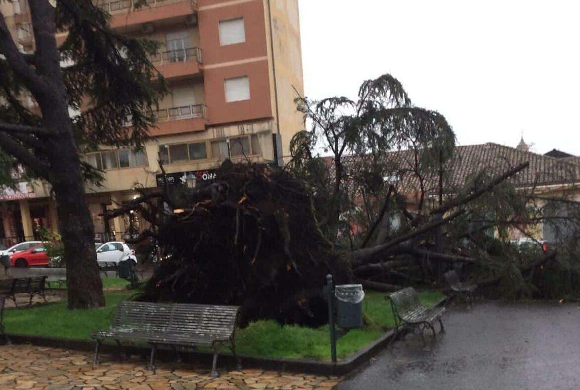 Catania, la conta dei danni post maltempo: 6 volontari della Misericordia finiscono al Cannizzaro