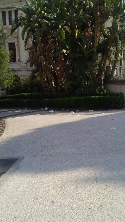 Degrado e sporcizia villa Bellini