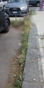 Degrado erbacce p A Moro