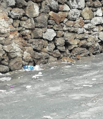 Rifiuti e topi in via Immacolata