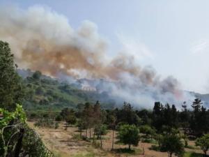 Incendio Agnone Bagni FACEBOOK (11)