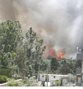 Incendio Agnone Bagni FACEBOOK (2)