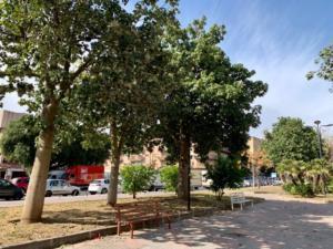 Piazza Croce Rossa italiana (7)