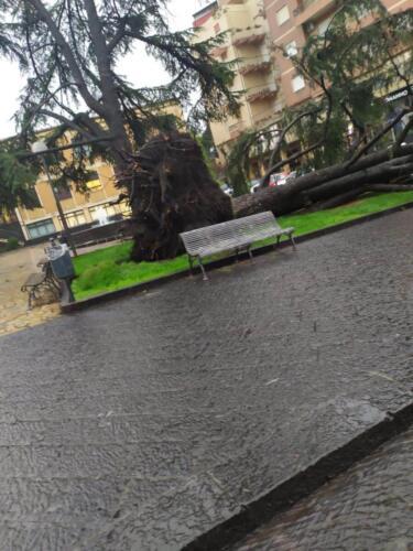 Pioggia Catania 5 ottobre (1)