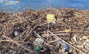 Rifiuti spiaggia San Leone (5)