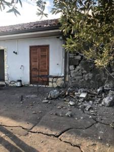 terremotofleri3