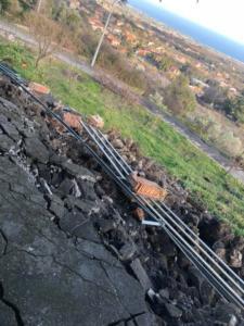 terremotofleri4